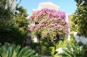 Горящие туры в отель Garden Pavlovic 4*, Будва,