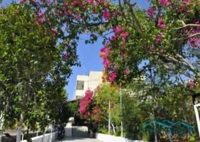 Горящие туры в отель Aeolos Apartments 1*, Греция, Лутраки 3*,