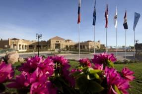 Горящие туры в отель Swiss Inn Dreams Resort 4*, Таба, Болгария
