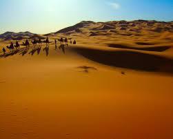 Отель Новогодний тур в Марокко 1089 eur  с авиа *, ,  - фото 1