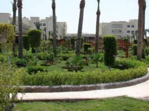 Отель Египет, Хургада, Festival Riviera Resort 5* *, ,  - фото 1