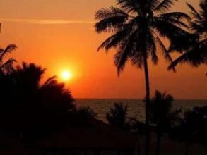 Отель Шри Ланка, Негомбо, Hotel J 3* *, ,  - фото 1