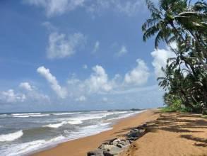 Отель Шри Ланка, Берувелла, Roy Villa 3 *, ,  - фото 1