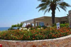 Горящий тур Aphrodite Beach Hotel - купить онлайн