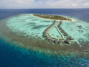 Горящий тур Amari Havodda Maldives 5 - купить онлайн