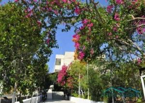 Горящий тур Aeolos Apartments 1*, Греция, Лутраки - купить онлайн