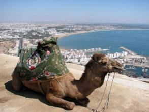 Отель Grand Tour Agadir (2-5 Pax & 7 Nights) 3*, , Марокко - фото 1