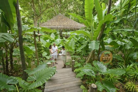 Отель Sun Island Resort & Spa 5 *,  - фото 11