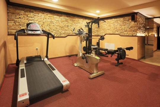 Отель Royal Park Bansko Resort & Spa (Apartment Part) 3*,  - фото 13