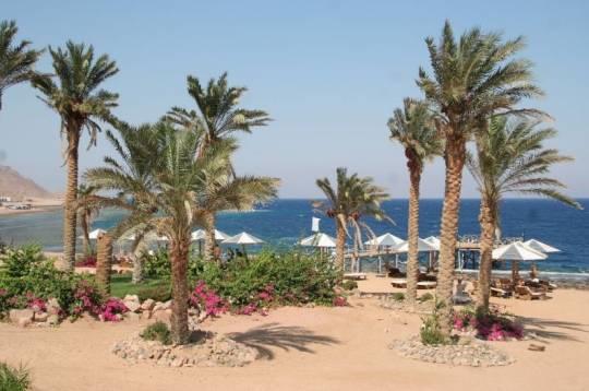 Отель Tropitel Dahab Oasis 4*,  - фото 5