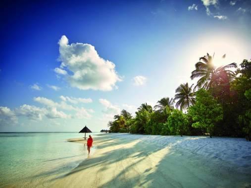 Отель Lux* South Ari Atoll Delux 5* *,  - фото 2