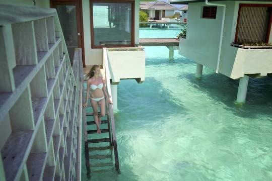 Отель Sun Island Resort & Spa 5 *,  - фото 5