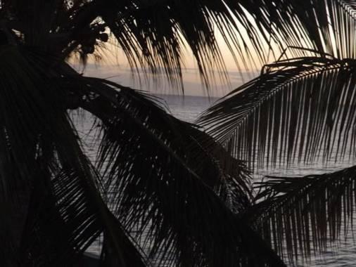 Отель Paradise Bungalows *,  - фото 13