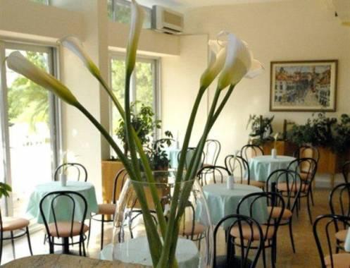Отель Adriatic Hotel 2*,  - фото 10