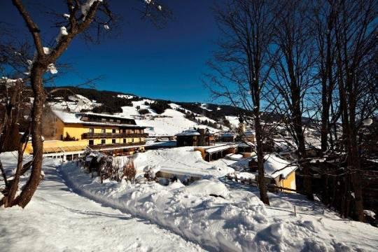 Отель Hotel Saalbacher Hof 4*,  - фото 4