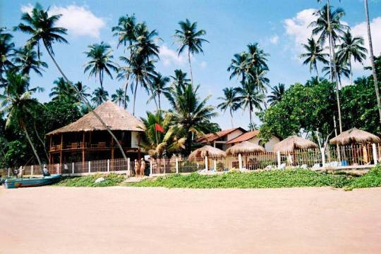 Отель Dickwella Village Resort 3*,  - фото 2