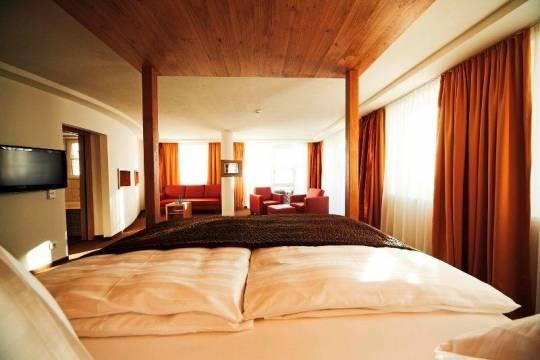 Отель Hotel Saalbacher Hof 4*,  - фото 10
